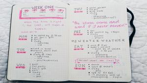 semana-registro